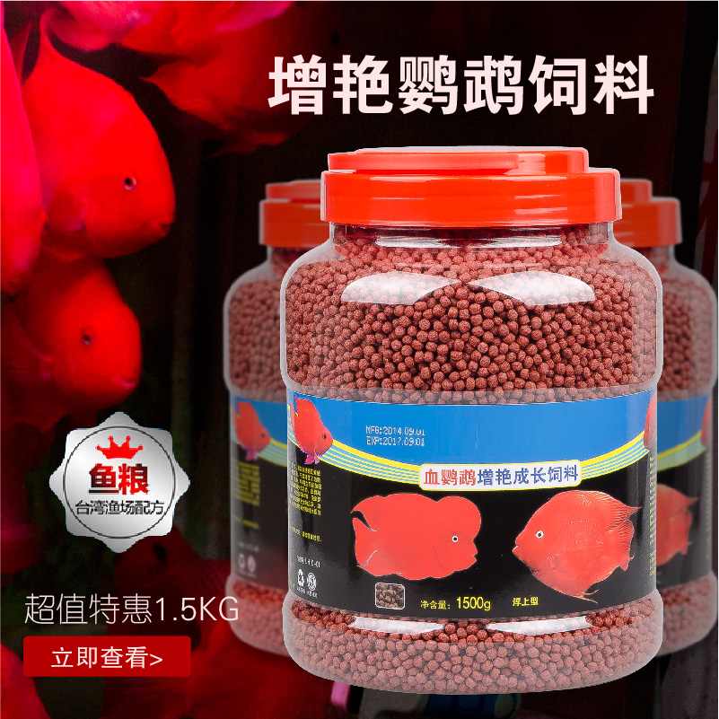 Red parrot fish food for Fish as food
