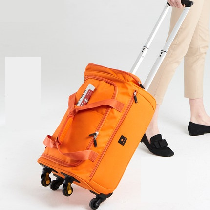 New-Fashion-18-20-22-inch-Backpack-Spinner-Travel-Bag-Casters-Trolley-Carry-On-Wheels-Women.jpg_640x640 (1)
