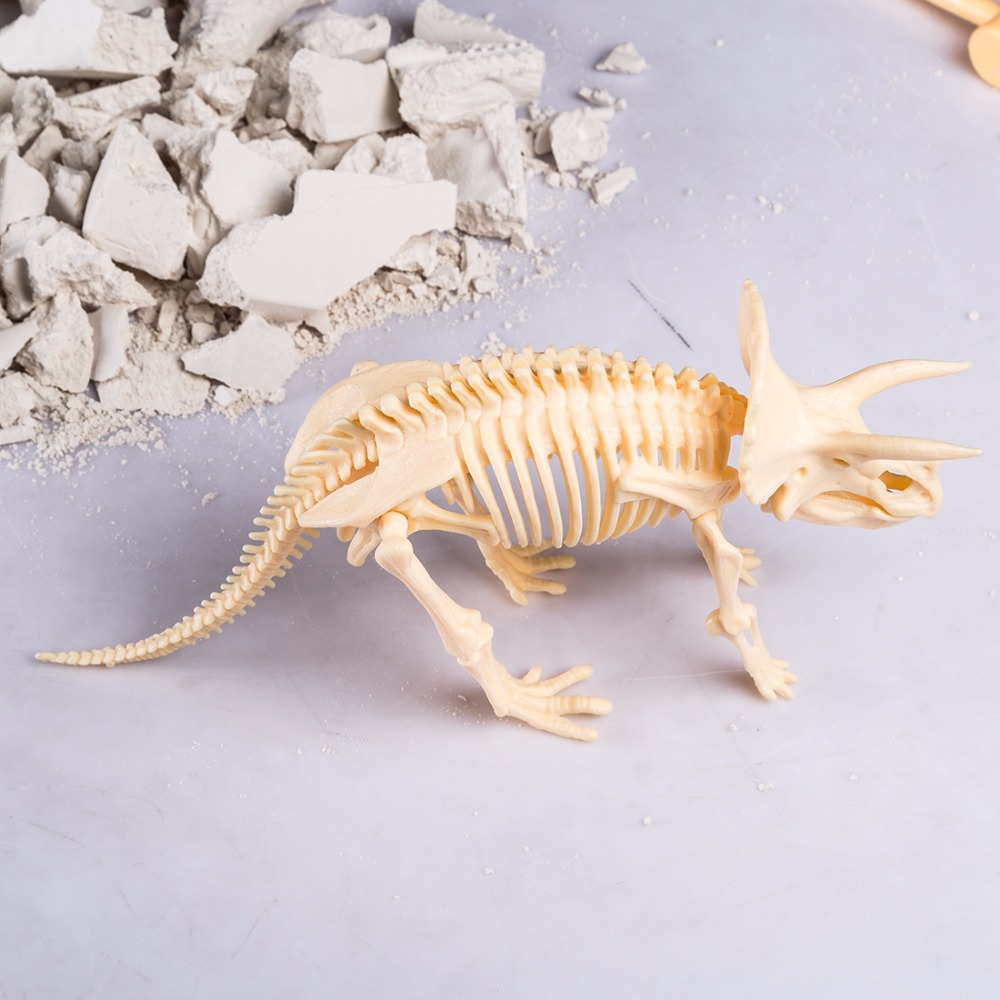 Bones and Fossils Excavation Dinosaur Skeleton Model Pack Suitable for 6 year old Toy Gift Present Enhance Their Minds Understanding of Dinosaur Archaeology Game Science Girls Girl Kids Childrens