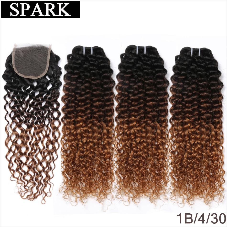 HTB1aZmRSmzqK1RjSZFHq6z3CpXaV Ombre SPARK Brazilian Human Hair Weave Bundles With Closure Afro Kinky Curly Hair With Closure Medium Ratio Remy Human Hair