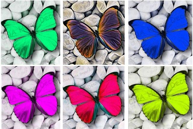 7500 Gambar Mosaik Hewan Kupu Kupu HD Terbaik