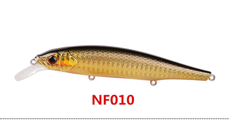 NF010_
