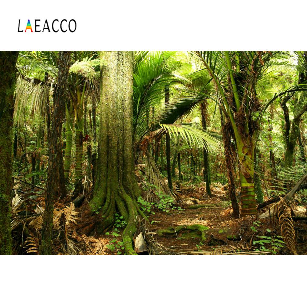 US $3 67 8% OFF|Laeacco Tropical Rain Forest Jungle Palm Tree Scenic  Photographic Backgrounds Photography Backdrops For Photo Studio-in  Background