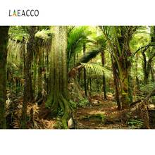 Laeacco Tropical Rain Forest Jungle Palm Tree Scenic Photographic Backgrounds Photography Backdrops For Photo Studio