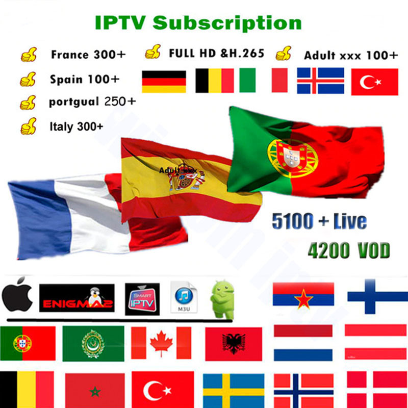 Spain Portugal French Belgium IPTV Arabic Russia IPTV Dutch IPTV  Support Android M3u Enigma2 Mag250 IPTV 4000+Vod Supported
