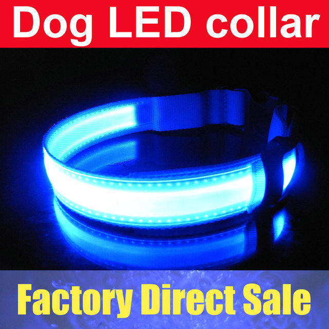 Pet Dog Safety LED Collar LED Light up Flashing Glow Blue Red
