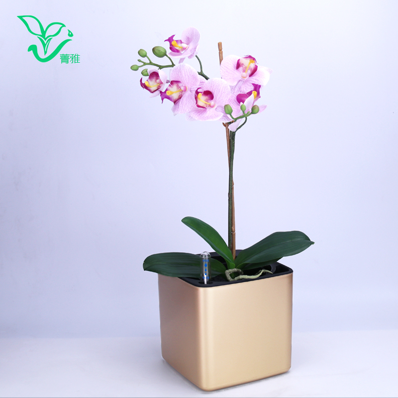 Six colour Margic square  lazy self absorption water creative personalized paint porcelain plastic flower pot for graden plant