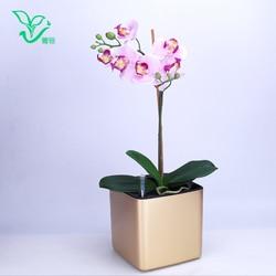 Six colour Margic square  lazy self absorption water creative personalized paint porcelain plastic flower pot for graden plant