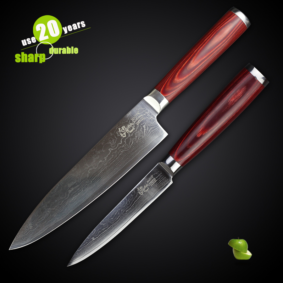 Haoye 2 Piece Damascus Kitchen Knives Set Japanese Vg10
