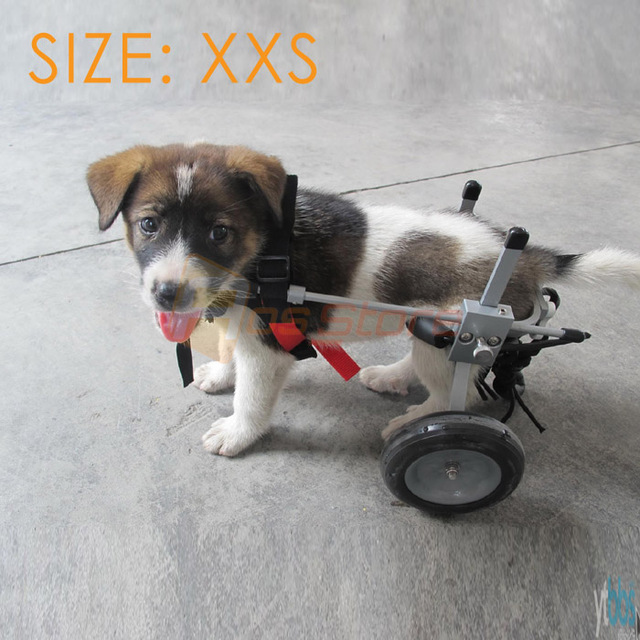 high quality small dog pet wheelchair for handicapped doggie puppy