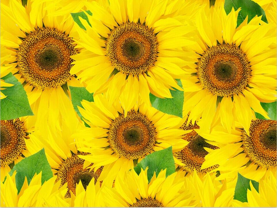 Benutzerdefinierte 3D Wandbilder Schne Romantische Sonnenblumendesign Funktion Murals Papel De Parede Wohnzimmer Sofa TV Schlafzimmer Hintergrund Tapete
