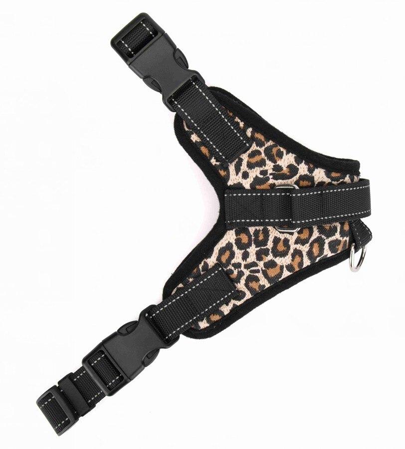 Leoparddgn