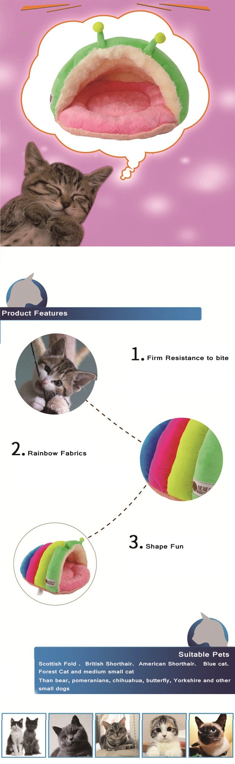 Rainbow Cat Bed9