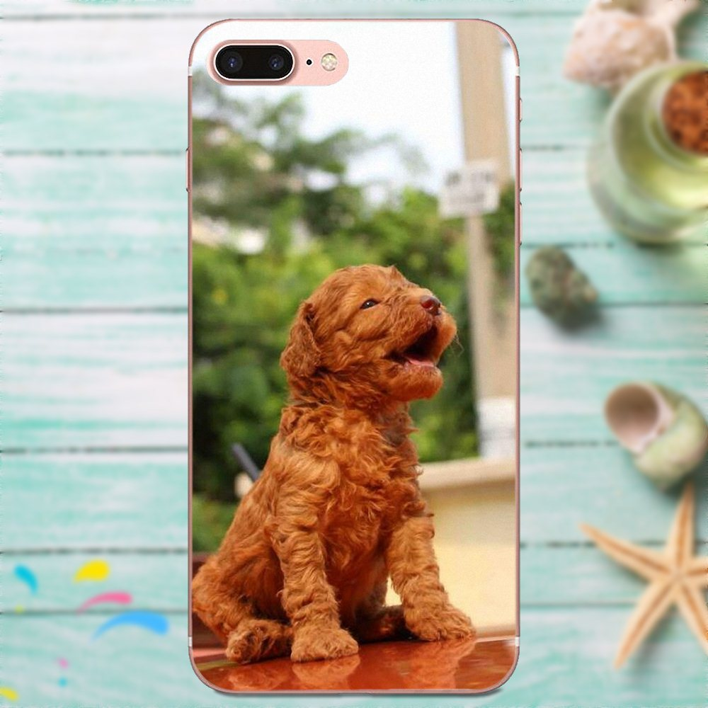 Toy Poodle Dog Puppy Tpu Fashion Cell