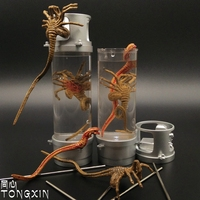 NECA Alien 2 Creature Pack Stasis Chanber LED Light PVC Figure Collectible Toy 18cm