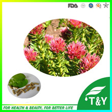 Rhodiola herb online shoppingthe world largest rhodiola herb