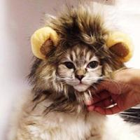 Lovely Fancy Pet Fancy Costume Mane Hair Cat Hat Wig Cosplay Lion Stuffed Hair Peg wigs