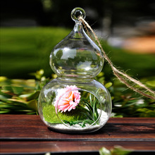 Стеклянная Подвесная лампа для свадьбы Riches And Honour, Подвесная лампа в форме дерева, гидропонная ваза