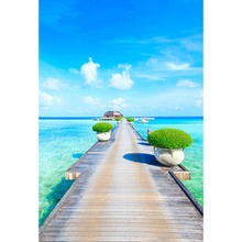 Laeacco Seaside Blue Sky White Clouds Wooden Bridge Natural Scene Photographic Background Photography Backdrops For Photo Studio