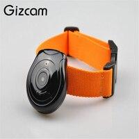 Gizcam Useful Dog Cat Puppy Mini Camera HD Collar Video Recorder Monitor DVR Pet Video Camcorder