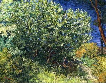 oil reproduction art by Vincent Van Gogh Lilac Bush Home decor Hand painted High quality