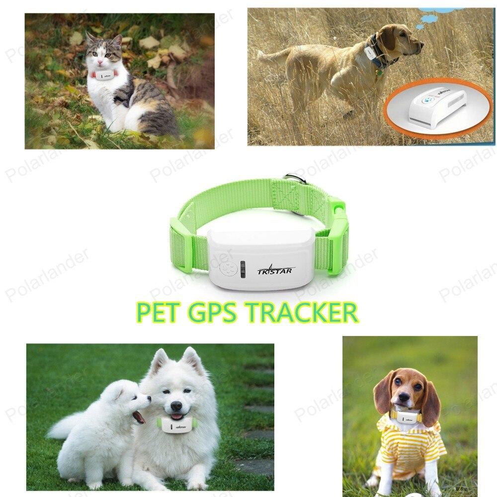 Pet Locator Indoor Gps Dog Collar Gps Pet Tracker Tkstar