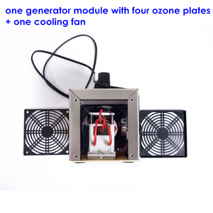 Image 5 - 220V 20g/h O3 Ozone generator ozonator machine air purifier