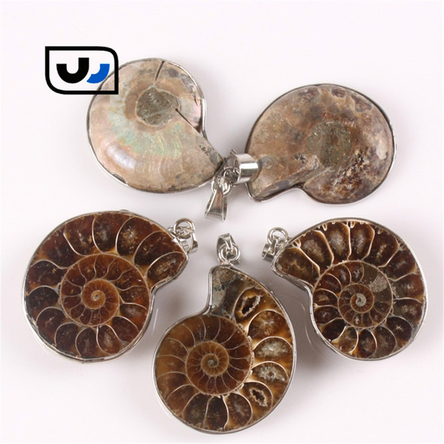 Seven chakra 2pcs handmade natural conch ammonite pendant necklace seven chakra 2pcs handmade natural conch ammonite pendant necklace half cut nature stone shell healing rock aloadofball Image collections