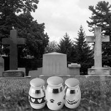 Мини из нержавеющей стали лапа сердечко кремация урна собака питомца Cinerary погребальные лапы домашние мемории полезные