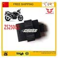 Moto gp racing zongshen CDI caja ZS250GS 250cc accesorios de la motocicleta 8 pins envío gratis