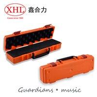 Alta qualidade caixa de ferramentas de plástico caixa de ferramentas de proteção instrumento flauta caixa de ferramentas com pré-corte forro de espuma frete grátis