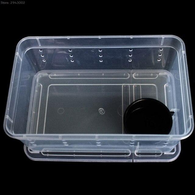Plastic Transparent Terrarium for Reptiles