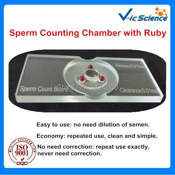 Vruće prodaju Sperma Count Board s crvenom - Škola i obrazovni materijali - Foto 2