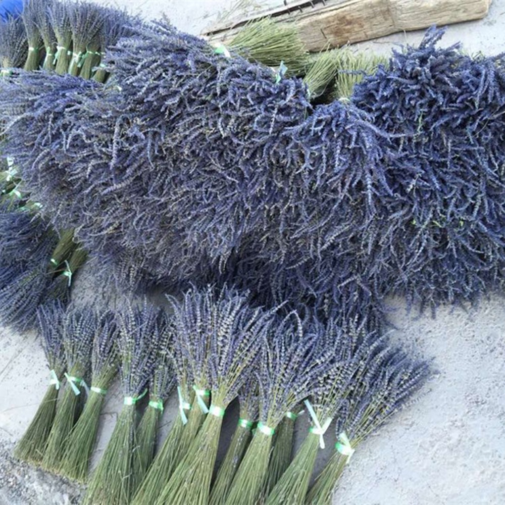 Denisfen Dried Flowers Bouquet Natural Lavender Flower Buds