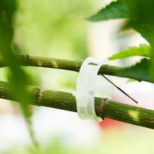 10 PC/set New Qualidade Durável Prendedor Grampos de Plástico planta Plantar Vinhas Tomate Vegetal ferramenta de jardim