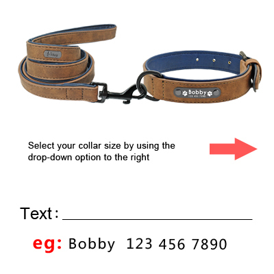 Custom Leather Personalized Dog Collar & Name Tag  2