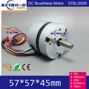 Circular Fuselage and Hall feedback 36V DC 4000rpm 57mm 23W 3 phase Brushless DC Motor