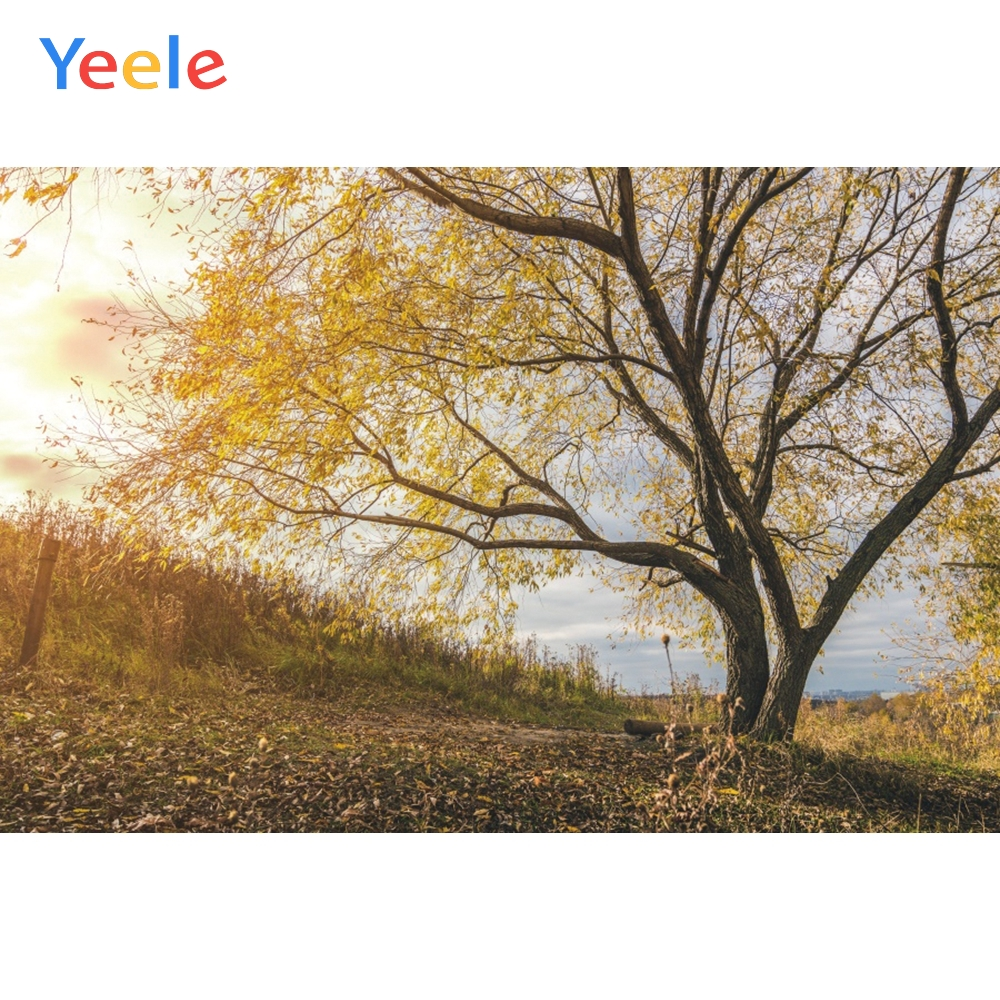 Yeele Autumn Landscape Photocall Yellow Leaves Decor Photography Backdrop Personalized Photographic Backgrounds For Photo Studio