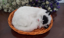 simulation breathing cat with basket model 26x17cm white cat with black head polyethylene & furs model decoration gift t425