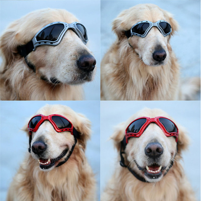 ebffe4265e8c3 Cute Pet Dog Sunglasses UV Protection Goggles Foldable Adjustable Windproof Waterproof  Pet Puppy Dogs Cats Eyewear Sun Glasses