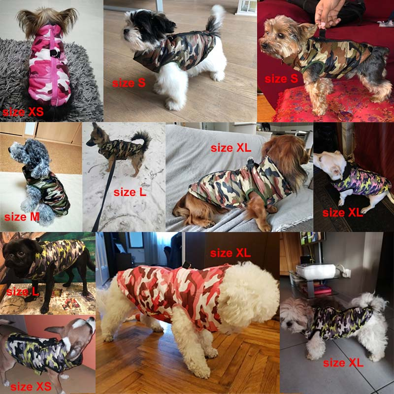 Waterproof Dog Jacket in Camo Pattern to Protect Dogs from Cold 3