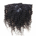 Brazilian Virgin Hair Clip ins Deep Wave Curly Hair Weave Websites African American Clip in Human Hair Extensions 100g-160g/set