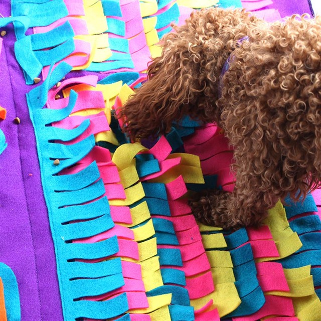 Dog Training Mat 1