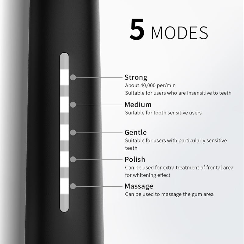 SEAGO Sonic Electric Toothbrush USB Rechargeable With Adults 5 Replacement Heads For Gift Black Swift Start Timer Toothbrush