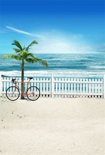 Laeacco Sea Side Fence Bicycle Palm Tree Portrait Photography Backdrops Customized Photographic Backgrounds For Photo Studio