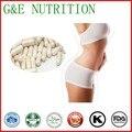 500 mg * 100 pcs L-carnitina cápsula Pó com frete grátis
