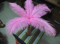 Groothandel natuurlijke Harde staaf 100 stks/partij roze Struisvogelveren 25-30 cm/10