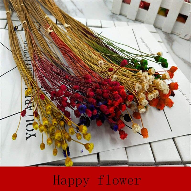 5pcs Cute Happy Flower Natural Small Dried Mini Decoration