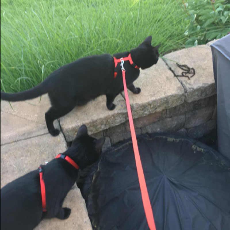 הוכחת בריחה חתול לרתום קטן חיית מחמד סט מתכוונן ניילון חבל רצועת קיטי לרתום רצועה צווארון לחתולים קטן כלבים