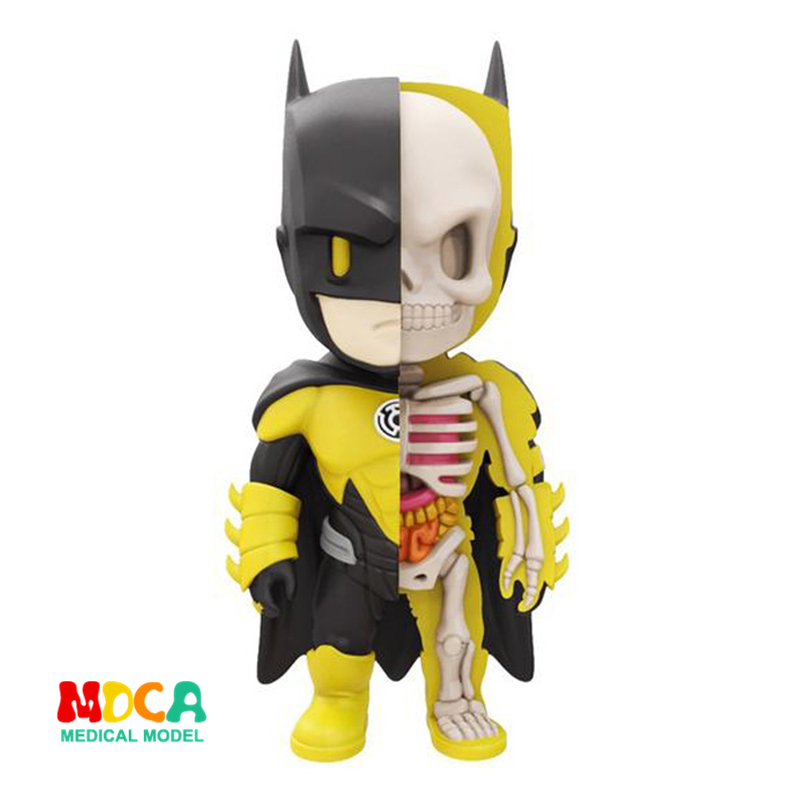 Yellow Batman 4D XXRAY master Mighty Jaxx Jason Freeny anatomy Cartoon ornament robin hood 4d xxray master mighty jaxx jason freeny anatomy cartoon ornament